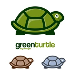 Turtle Logo Side View