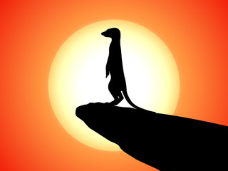 Vector silhouette of meerkat on a cliff of sunset