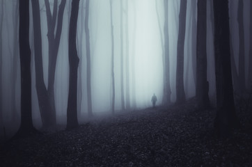 Haunted forest background. Scary ghostly figure in fog in dark woods