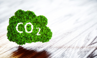 Green ecology CO2 icon on wooden background