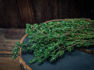 Green thyme, close up