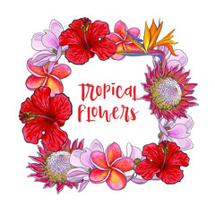 Square frame of tropical flowers with place for text, sketch vector illustration isolated on white background. Hand drawn realistic exotic, tropical flowers as square frame, banner, label design