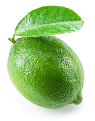 Ripe lime fruit with leaf on the white background.