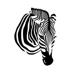 zebra head on white background. Vector illustration. Savannah Animal ornament. Wild animal texture. Striped black and white.