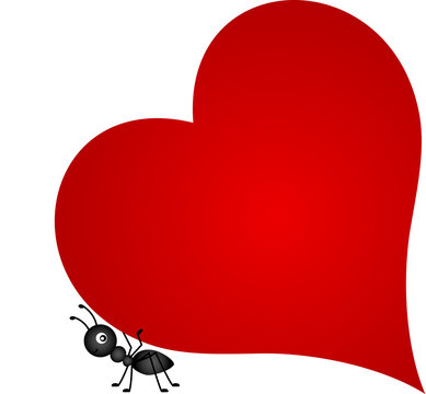 Ant carrying red heart