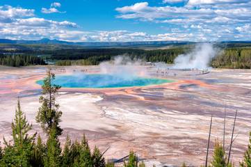 Majestic Grand Prismatic Spring  in Yellowstone National Park.