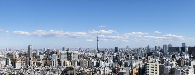 東京風景(文京区シビックセンターから浅草・スカイツリー方面)