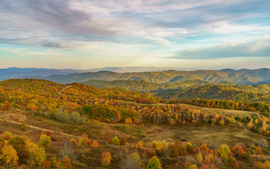 Fall on Max Patch Mountain