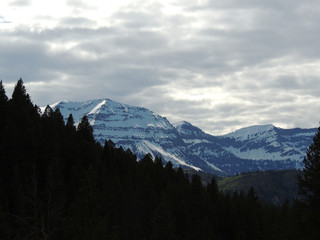 Early Spring in the Salt River mountains of Wyoming, Virginia Peak under a mantle of snow.