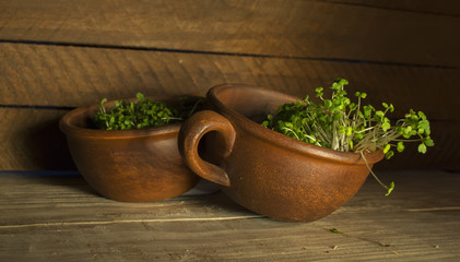 Green sprouts seeds in a brown ceramic cup 4