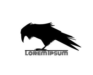 Raven logo template