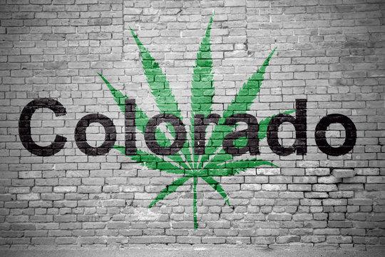 Hanfblatt Colorado Cannabis an Ziegelsteinmauer