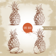 Hand drawn sketch style set illustration of ripe pineapples. Exotic tropical fruit vintage vector illustration