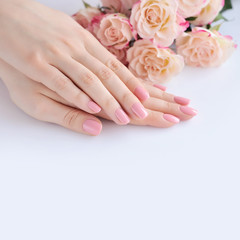 Aluminium Prints Manicure Hands of a woman with pink manicure on nails and roses