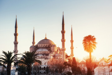 Illuminated Sultan Ahmed Mosque before sunrise