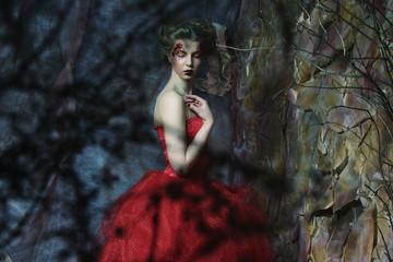 Portrait of a beautiful woman in medieval era dress. Shot in a s