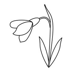amaryllis flower decorative icon thin line vector illustration eps 10