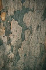Fotobehang Oude vuile getextureerde muur Wooden background