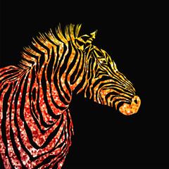 Animal illustration of vector zebra silhouette with golden sparkley elements.