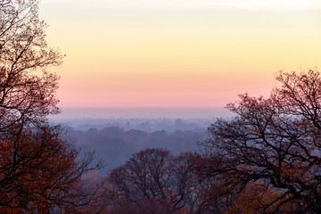 Sunset seen from Richmond Park, London