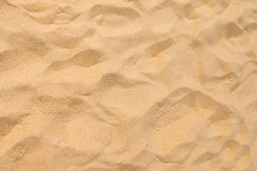 Wall Mural - Fine beach sand in the summer sun
