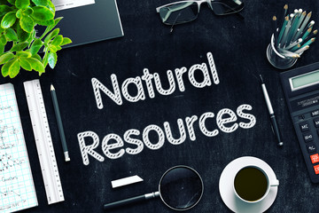 Black Chalkboard with Natural Resources. 3D Rendering.