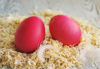 Easter eggs on wood sawdust. Traditional game with breaking eggs
