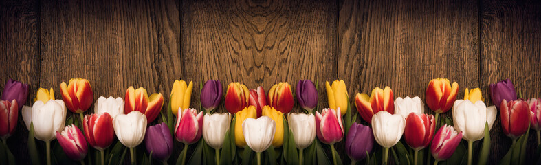 In de dag Tulp Spring tulips on wooden background
