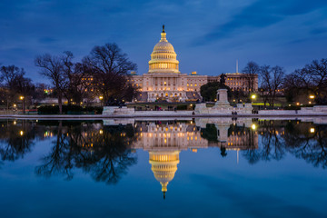 The United States Capitol at night, in Washington, DC. Wall mural