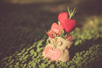 Heart-shaped gift in a bag on the floor of the Clover.