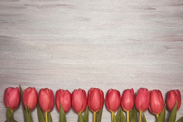Wooden background with red tulips. Copy space, top view, toned