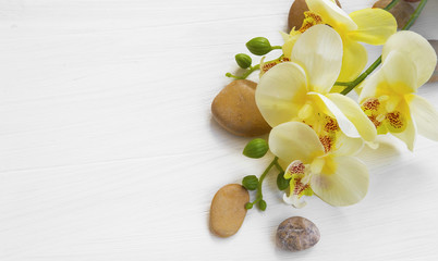 Orchid spa setting with flower and massage stones