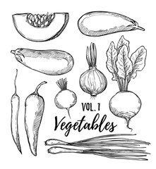 Hand drawn vector illustration - collection of vegetables vol.1(pumpkin, eggplant, onion, pepper, turnip, radish, chili pepper).Design elements in sketch style.