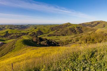 California Coastal Mountain Landscape in Spring