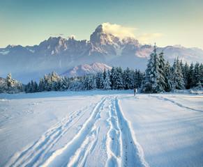 the winter road. Dramatic scene. Carpathian, Ukraine, Europe