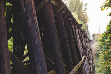 Wooden train bridge or trestle in lush forest area