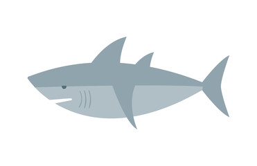 Vector shark character fish animal.