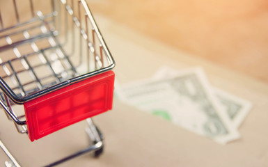 Shopping cart with money on vintage stye