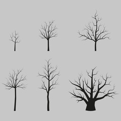 Set of vector trees black silhouettes without leaves