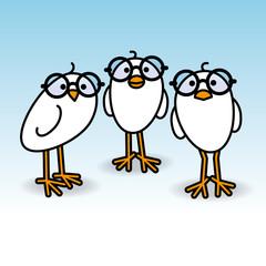 Three White Chicks Wearing Round Black Glasses Staring