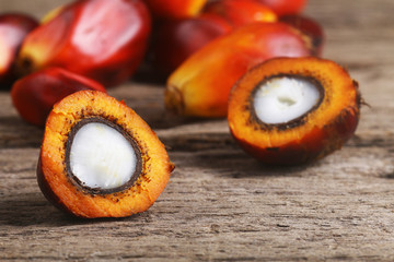 Close up on cut oil palm seed