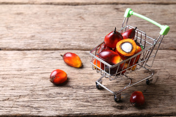 Oil palm seeds in trolley. Concept of palm oil ingredient in market products.