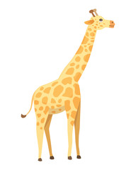 Giraffe cartoon style, vector art and illustration. Safari africa.
