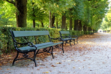 Travel to Vienna, Austria. The benches in the park in the autumn sunny day.