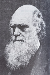 Portrait of the scientist philosopher Charles Darwin