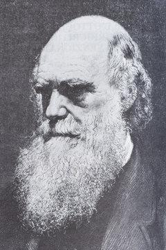 Portrait of the scientist philosopher Charles Darwin