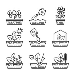 Wall Mural - Plant growing line icons. Vector greenhouse planting and seedling outline signs
