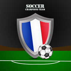 Illustration of France flag participating in soccer tournament