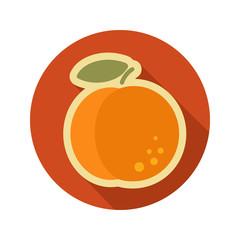 Peach flat icon. Fruit