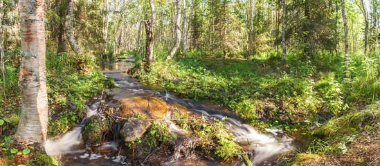 Бурный поток воды в лесной речке на Большом Соловецком острове